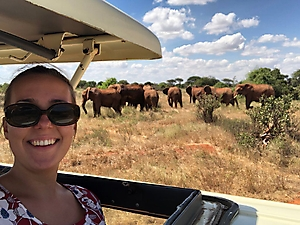 On safari with PD Tours_3