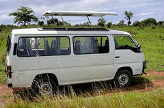 Safari mini-bus