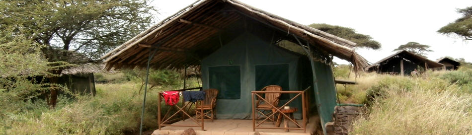 Kibo Safari Camp - Information & Pictures